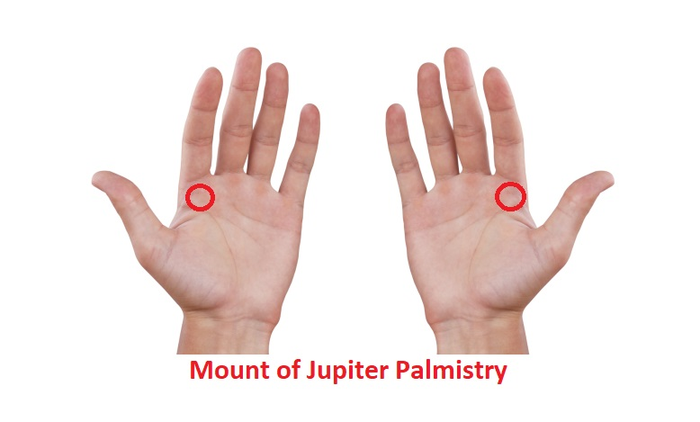 Different Types of the Mount of Jupiter